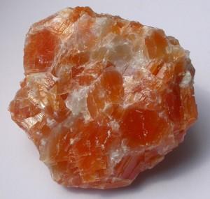 oranzs